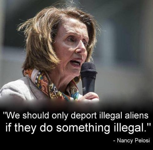 9 Illegal by Pelosi8
